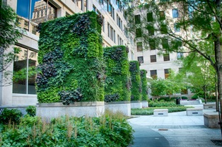 My Liberty Mutual Connection >> Benefits of Green Walls or Vertical Gardens - Green Walls ...