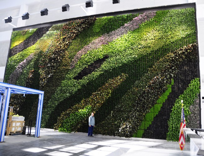 Famous Green Living Wall On Building 655 x 500 · 163 kB · jpeg