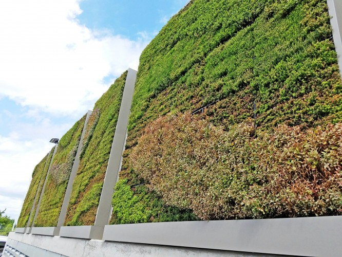 2016 09 14: Yahoo! For Going Greener With G O2® Green Walls