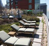 Green Roofs Extensive Vs Intensive Green Walls Amp Green