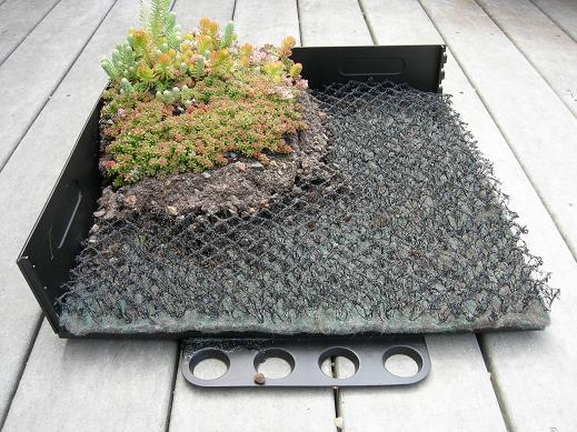 Attrayant Green Roofs: How Our System Works   Green Walls U0026 Green Roofs   Plant  Connection
